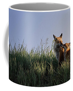 Red Fox Morning Coffee Mug