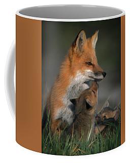 Red Fox Mother And Kits Coffee Mug