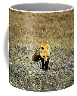 Coffee Mug featuring the photograph Red Fox On The Tundra by Anthony Jones