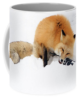 Red Fox To Base Coffee Mug