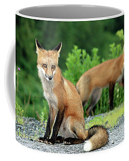 Red Foxes In The Rain Coffee Mug