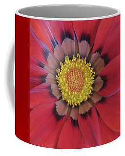 Red Gazania Coffee Mug by David and Carol Kelly