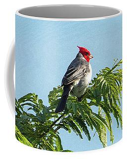 Red-headed Cardinal On A Branch Coffee Mug