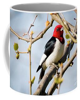 Red-headed Woodpecker At A Glace  Coffee Mug