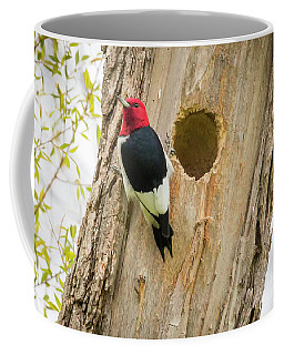 Red-headed Woodpecker At Home Coffee Mug