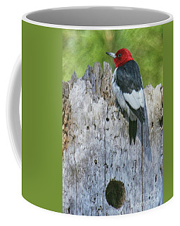 Red-headed Woodpecker Coffee Mug by Myrna Bradshaw