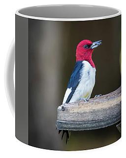Red-headed Woodpecker With Seed  Coffee Mug