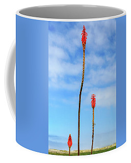 Coffee Mug featuring the photograph Red Hot Pokers by James Eddy