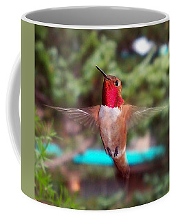 Coffee Mug featuring the photograph Red Hummingbird by Joseph Frank Baraba
