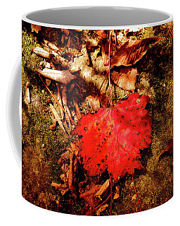 Coffee Mug featuring the photograph Red Leaf by Meta Gatschenberger