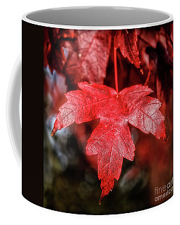 Coffee Mug featuring the photograph Red Leaf by Robert Bales