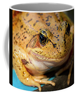 Coffee Mug featuring the photograph Red Leg Frog by Jean Noren