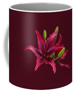 Red Lilies Coffee Mug by Jane McIlroy