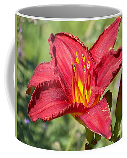 Coffee Mug featuring the photograph Red Flower by Eunice Miller