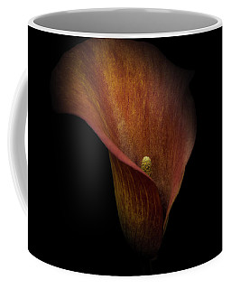 Coffee Mug featuring the photograph Red Lily by Ryan Photography