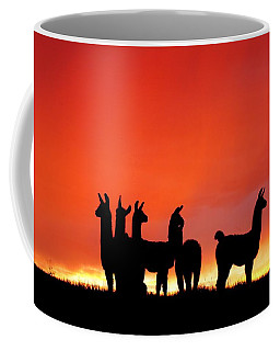 Red Llama Sunset 1 Coffee Mug