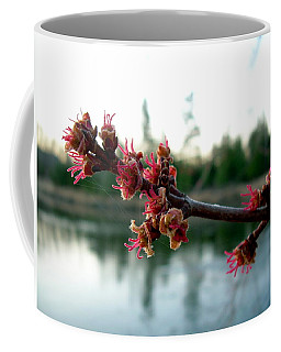 Coffee Mug featuring the photograph Red Maple Buds At Dawn by Kent Lorentzen