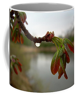 Coffee Mug featuring the photograph Red Maple Seed Pods At Dawn by Kent Lorentzen