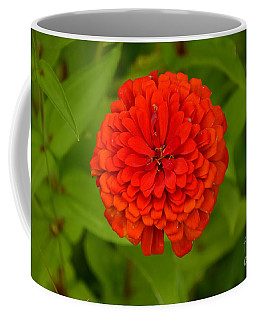 Red Marigold Coffee Mug