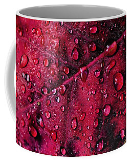 Coffee Mug featuring the photograph Red Morning by Gene Garnace