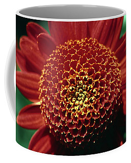 Red Mum Center Coffee Mug by Sally Weigand