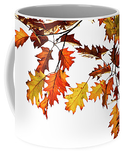 Red Oak Leaves In Fall Coffee Mug