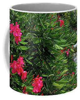 Coffee Mug featuring the photograph Red Oleander Arbor by Marie Hicks