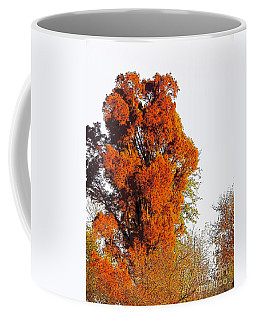 Red-orange Fall Tree Coffee Mug by Craig Walters