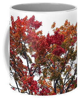Coffee Mug featuring the photograph Red Orange Treetop by Ellen Barron O'Reilly