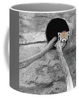 Red Panda Sleeping Coffee Mug by Brooke T Ryan
