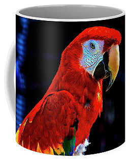 Red Parrot Portrait  Coffee Mug