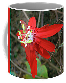 Red Passion Flower Coffee Mug by Mary Haber