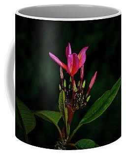 Red Plumeria Coffee Mug