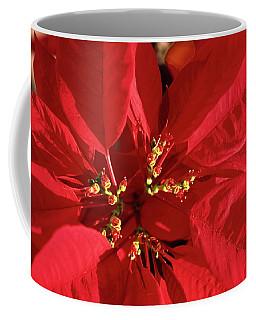 Red Poinsettia Macro Coffee Mug by Sally Weigand