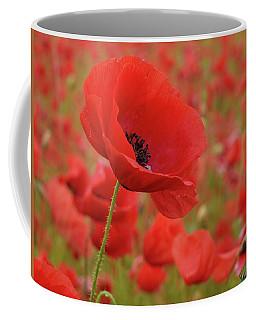 Red Poppies 3 Coffee Mug