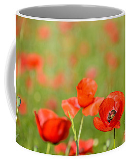 Red Poppy In A Field Of Poppies Coffee Mug