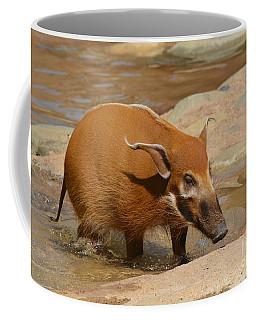 Red River Hog  Coffee Mug