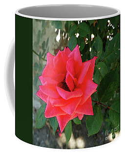 Pink Rose  Coffee Mug by Don Pedro De Gracia