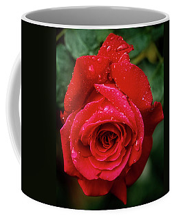 Coffee Mug featuring the photograph Red Rose After Rain by John Brink