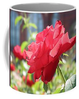 Red Rose Coffee Mug by Brian McDunn