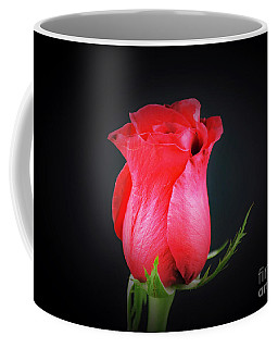 Red Rose Shows Love  Coffee Mug by Ray Shrewsberry
