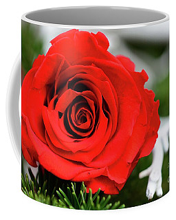 Coffee Mug featuring the photograph Red Rosie by Cindy Manero