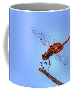Red Saddlebag Dragonfly Coffee Mug