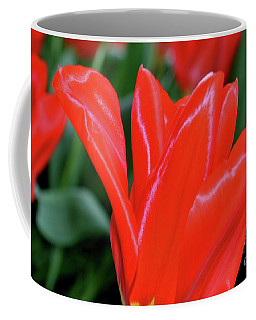 Red Satin Coffee Mug