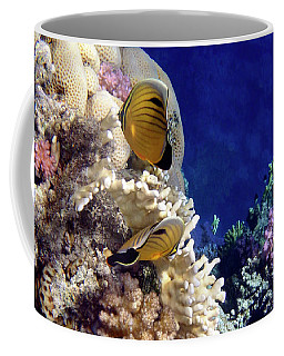 Red Sea Exotic World Coffee Mug