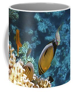 Red Sea Magical World Coffee Mug