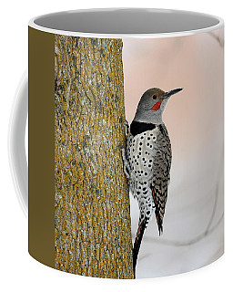 Red Shafted Northern Flicker Coffee Mug