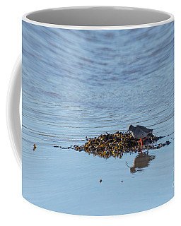 Coffee Mug featuring the photograph Red Shank 01 by Brian Roscorla