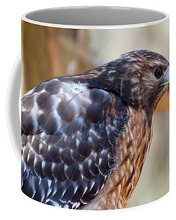 Coffee Mug featuring the photograph Red Shouldered Hawk 2 by Chris Flees