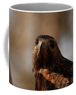 Coffee Mug featuring the photograph Red Shouldered Hawk Close Up by Chris Flees